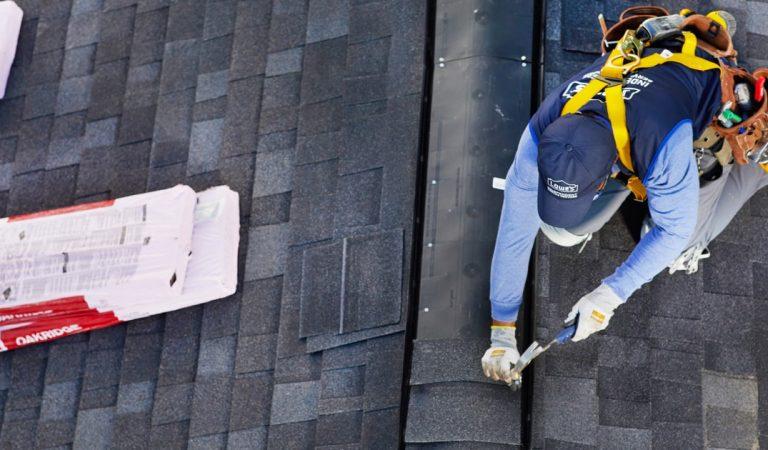 Roof Repairs – Roof